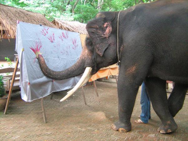 Elephant Artist